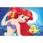 Ariel Little Mermaid Bedroom / Bath mat