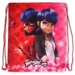 Ladybug Trainer Bag