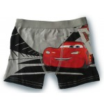 Cars Boxers