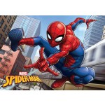 Spiderman Bedroom / Bath mat